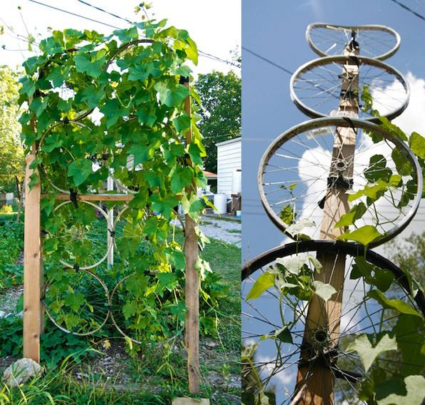 Amazing tips to Make Your Own Trellis Netting.