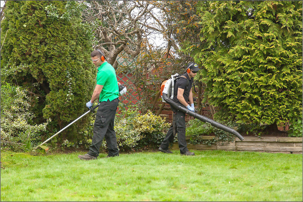 Garden Maintenance Tips in May.