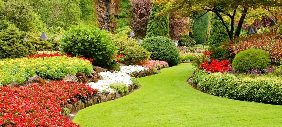 Whether you grow vegetables, flowers, or landscape flowers like trees and shrubs, some regular garden maintenance is important.