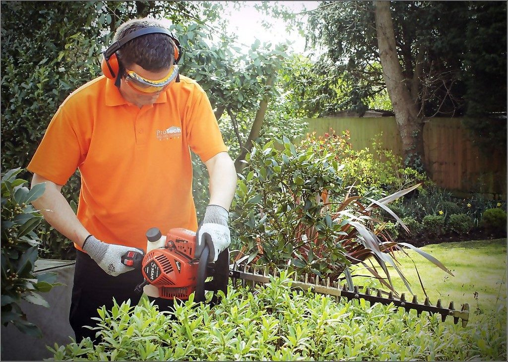 What to Expect When Hiring a Garden Maintenance Service Contractor?
