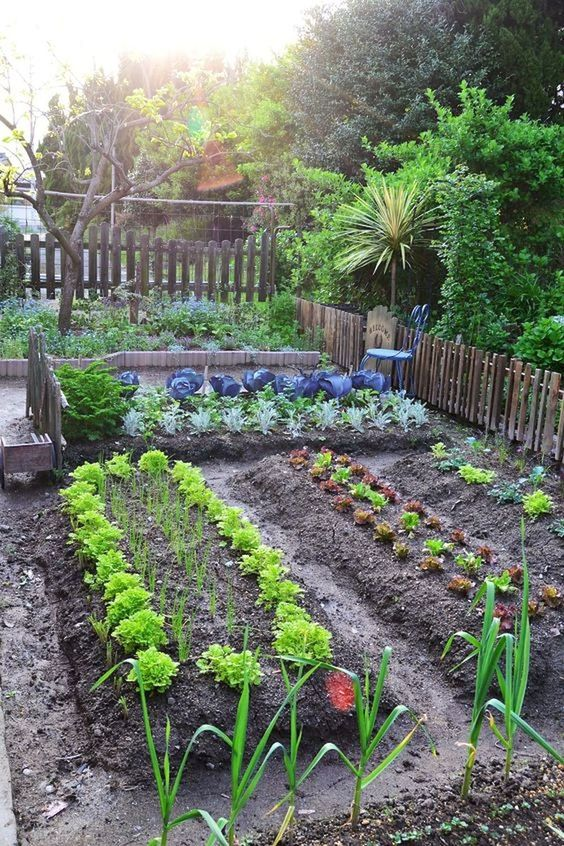 18 Fabulous Backyard Vegetable Garden Design Ideas for ... on Backyard Patio Layout id=13052