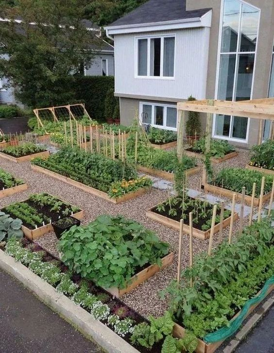 18 Fabulous Backyard Vegetable Garden Design Ideas for ...