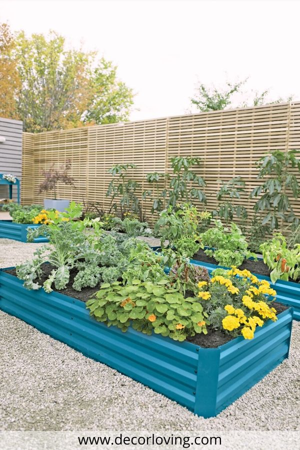 How to Build a Raised Garden Bed: Tips For Correct Filling ...